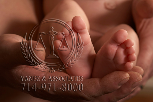 Paternity Attorneys in Orange County | Top California Paternity Lawyer