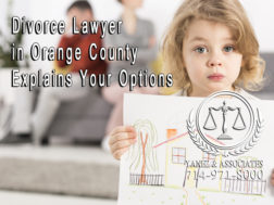 Divorce Lawyer in Orange County Explains Your Options